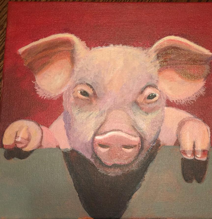 006 - Nosy Pig